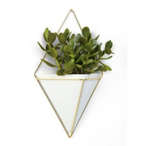 Trigg Large Wall Vessel in White & Brass by Umbra