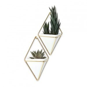 Trigg Small Wall Vessel in White & Brass by Umbra