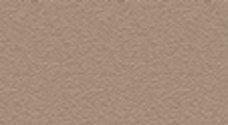 P33 | Grey beige RAL 1019 (texture)