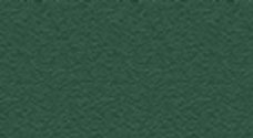 P75 | Pine green RAL 6028 (texture)